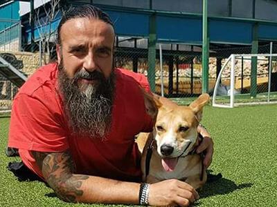 entrenadores de perros